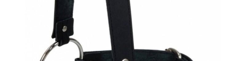 Kopfgeschirr-mit-Beissstange